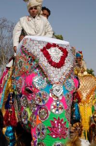 India 603